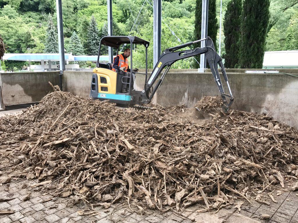 Posa radici legnose biofiltro - Biofiltrazione.it